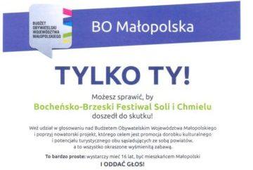Bocheńsko-Brzeski Festiwal Soli i Chmielu - głosowanie