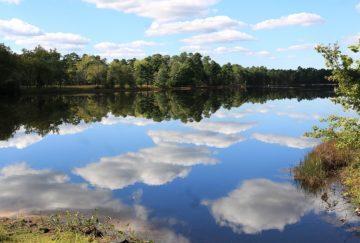 Aktualny stan rzeki Stradomki