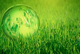 Środowisko i Rolnictwo